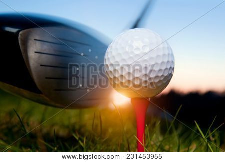Golf club and ball in grass with sunlight. Close up at golf club and golf ball