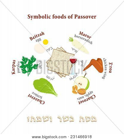 Passover symbols set vector photo free trial bigstock passover symbols set symbolic foods for jewish holiday of pesach with names in hebrew and english matzah greeting inscription hebrew happy and kosher m4hsunfo