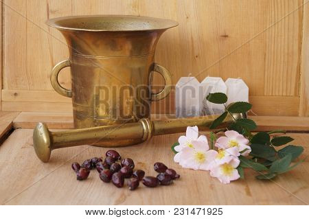 Medicinal Plants - Eglantine - Flowers, Fruits