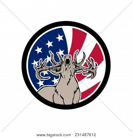 Icon Retro Style Illustration Of A North American Deer Roaring Front View With United States Of Amer