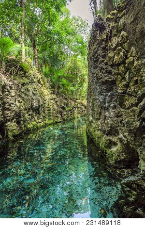 Small River Arounded With The Rocks In Park Xcaret, Mexico