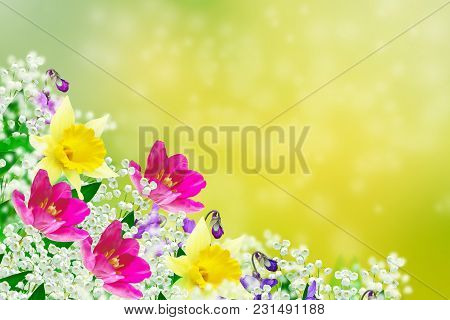 Bright And Colorful Spring Flowers. Floral Background.