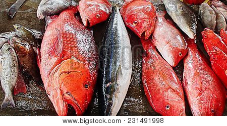Offered For Sale On The Market Is Freshly Caught Fish, Various Types And Colors