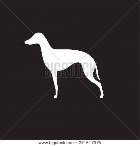 Silhouette Of Italian Greyhound. Dog Icon. Vector Illustration