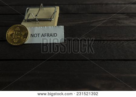 Mouse Trap, Frontside Of Bitcoin And The Word Not Afraid