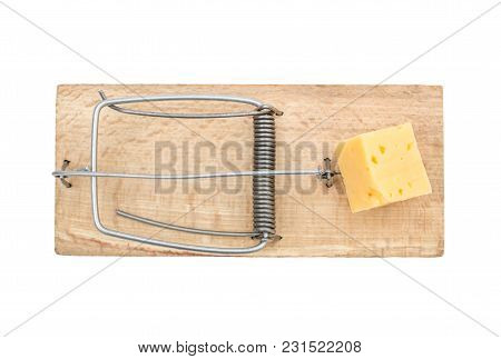 Piece Of Cheese In Mousetrap. Isolated On White. Top View.