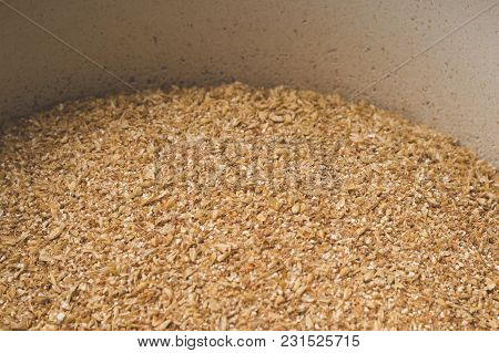 Grinded Grains Of Barley Malt Close-up. Craft Beer Brewing From Grain Barley Pale Malt In Process. A
