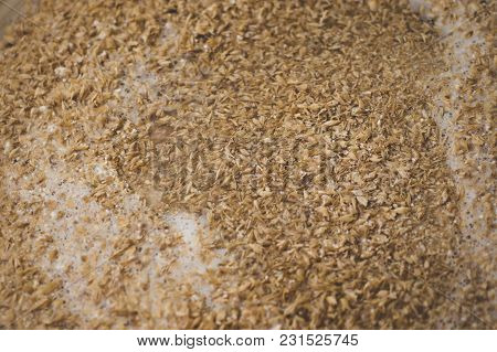 Mashing Of Milled Malt Grains Into Heated Water To Prepare Wort. Craft Beer Brewing From Grain Barle