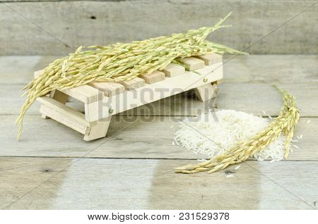 Cropped Image, Paddy Pile On Wooden Table, White Rice With Paddy Pile On Wooden Floor With Old Wood