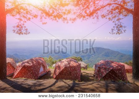 Camping Tent In The Top Of Mountain In The Morning, Tourist Tent In Forest Camp Among Meadow