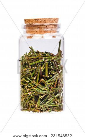Sprouts Sprigs Of Bilberry For Medical Use In A Bottle With Cork Stopper. High Resolution Photo