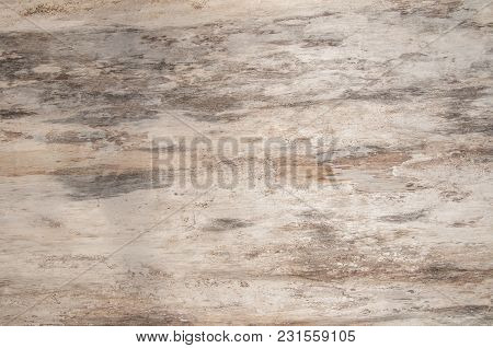 Natural Wood Texture Of Tree Without Bark