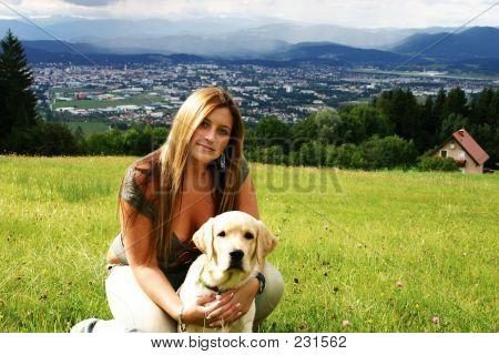 Model - Dog