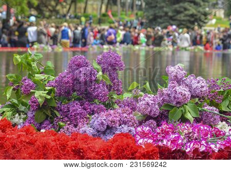 Red Carnations And Lilacs On A Marble Military Memorial Near Water