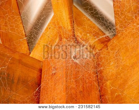 Sticky And Dusty Spiderweb On Ceiling Background.