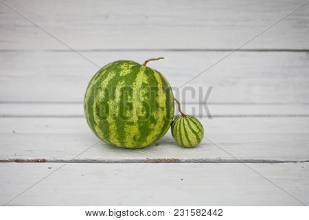 Two Small Watermelon On A White Wooden Background
