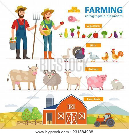 Farming Infographic Elements. Two Farmers - Man And Woman, Farm Animals, Equipment, Barn, Tractor, L