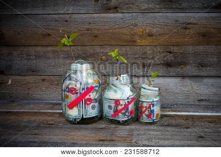 Glass Jars With Money (dollars) From Which The Tree Sprout Grows. Concept Profit Markup