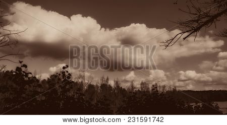 Blurred Clouds And Silhouettes Of Trees. Autumn Season. Panoramic And Web Banner.