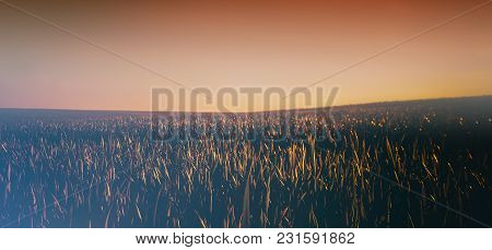 Sunset In The Plain. Summer Season. Panoramic And Web Banner.