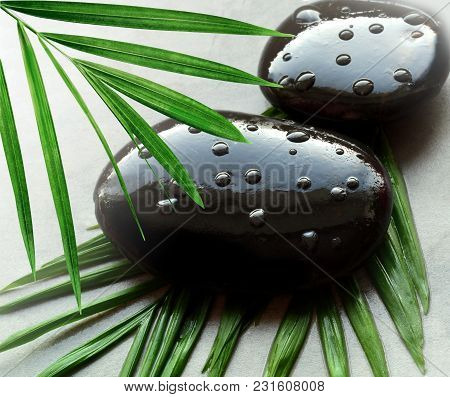 Grey Spa Background, Moisturizing Concept, Palm Leaves And Black Wet Stones, Top View