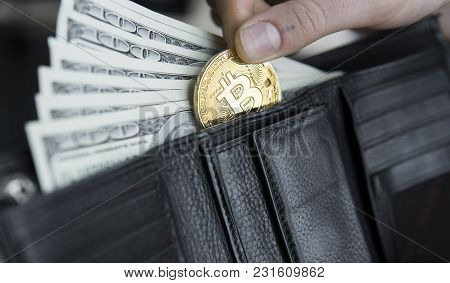 Golden Bitcoins And Hundred Dollar Bills In Leather Wallet. Bitcoin With Dollar In Purse. Profit Fro