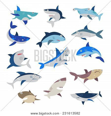 Shark Vector Cartoon Seafish With Sharp Teeth In Jaw Illustration Set Of Attacking Fishery Character