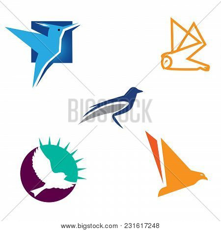 Isolated Abstract Color, Bird Wings With Feathers Logo Set. Flight Logotype Collection. Air Icons. V