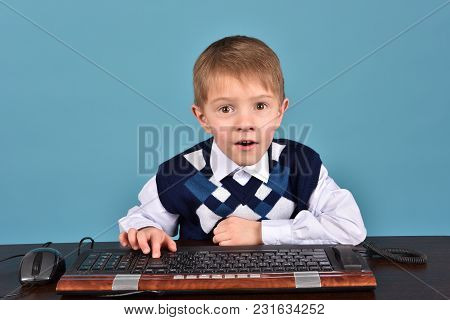 The Schoolboy Is Studying The Program. The Boy Is Sitting At The Computer.