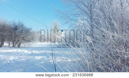 Landscape Russian Winter Clear Frosty Day Frost Frosts Siberian Cold Snow Frost