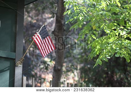 United States Flag In The Forrest July