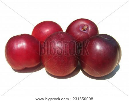 Ripe,  Red Plums, Isolated On A White Back Ground 01