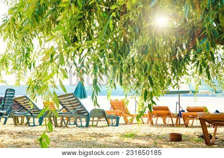 An Empty Beach With Trees And Chaise-longues