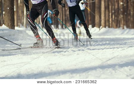 Ski Competition - Legs Of Sportsmen Running On Snowy Sunny Forest, Telephoto Shot