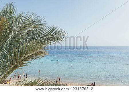 View Of The Sea And The Beach Through The Leaves Of A Palm Tree