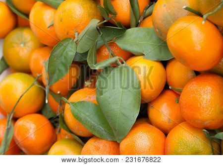 Satsumas A Box Of Freshly Picked Satsumas For Sale On The Market