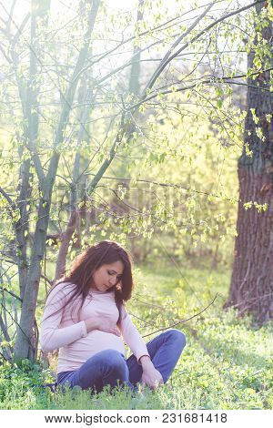 Portrait Of A Pregnant Woman Sitting On The Lawn In The Park