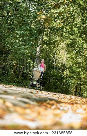 Young Mother Pushing Her Baby In A Pram Or Stroller Through A Forest In Autumn Viewed Low Angle With