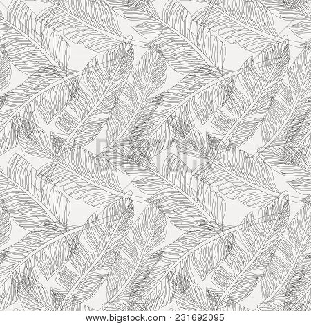 Outline Black And White Graphic Tropical Branches Palm Leaves Seamless Pattern Background Seamless P
