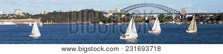 Sailing On The Parramatta In View Of The Sydney Harbour Bridge