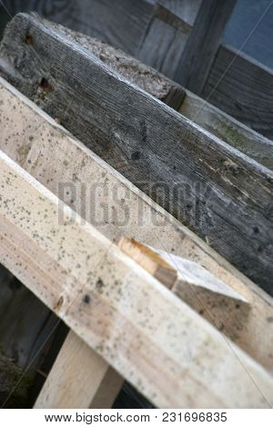 Leaning Against Each Other Old Wooden Pallet And New Wooden Pallet With Mold And Foxing