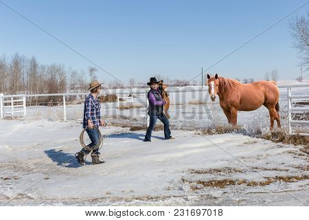 Horizontal Image Of Two Cowgirls Walking Toward Their Brown With A Saddle To Saddle Up And Ride On A