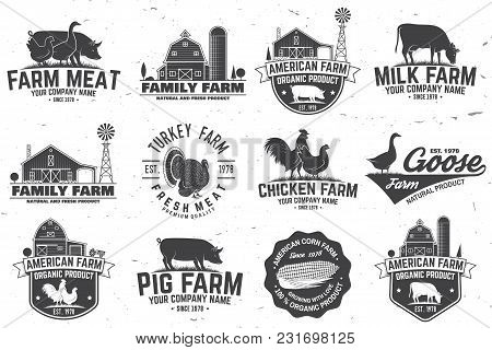 American Farm Badge Or Label. Vector Illustration. Vintage Typography Design With Chicken, Pig, Turk