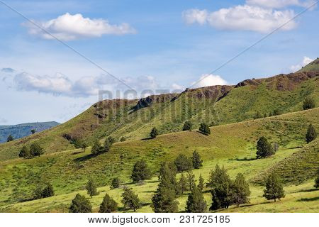 Eastern Oregon Hillside, Blue Skys With A Few Clouds, Only A Handfull Of Trees.