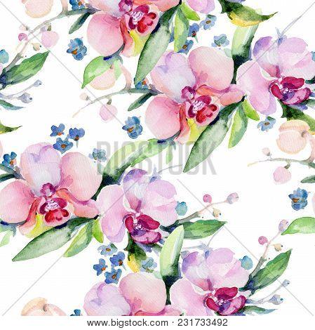 Bouquet Flower Pattern In A Watercolor Style. Full Name Of The Plant: Orchid. Aquarelle Wild Flower