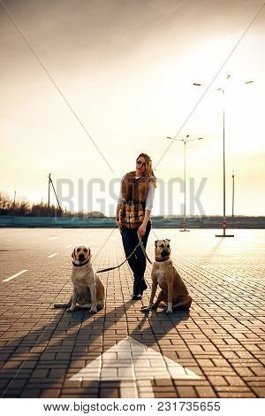 Girl With Her Two Dogs Resting Outdoors