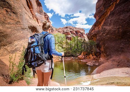 Rear view of a Woman hiking to a waterfall in a red rock canyon. She is experiencing desert beauty in the United States.