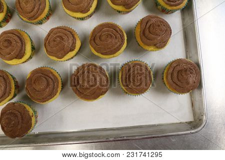Delicious Handmade Brown Sugar Vanilla Cupcakes With Homemade Chocolate Butter Cream Frosting Sittin