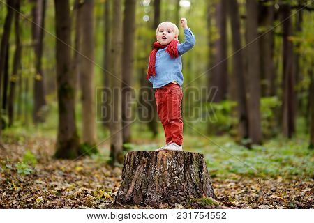 Little Boy Playing On Wooden Stump During Stroll In The Forest At Spring, Summer Or Autumn Day. Acti