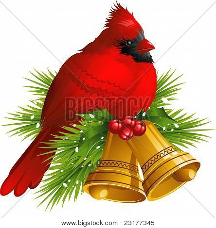 Cardinal Bird with Christmas bells over white. EPS 8 poster